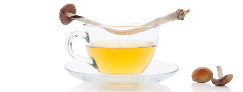 How To Make Delicious Magic Mushroom Tea 1