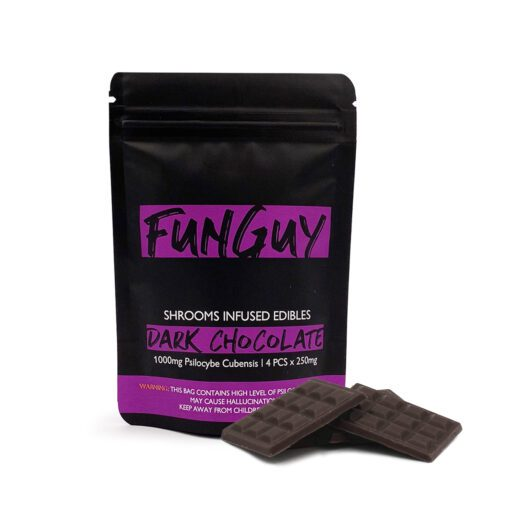 FunGuy Dark Chocolate Magic Mushroom Edibles