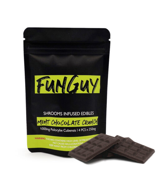 FunGuy Mint Chocolate Crunch Magic Mushroom Edibles