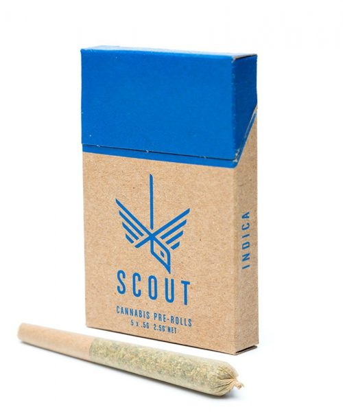 Scout Pre Rolls Indica THC