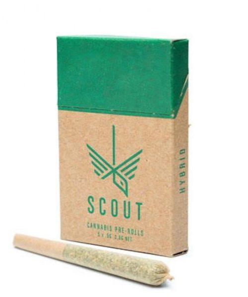 Scout Hybrid Pre Rolls THC